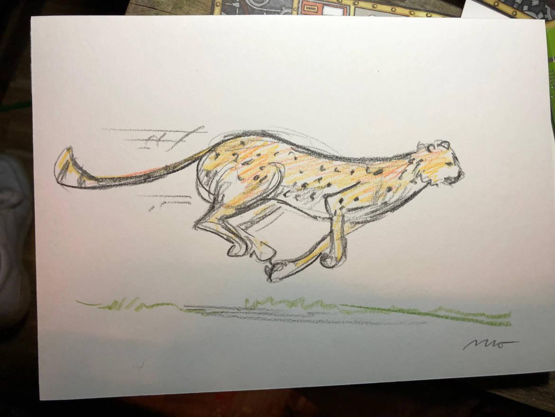 slider-event-1170×878-cheetah